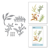 Spellbinders - Susan's Autumn Flora Collection - Etched Dies - Foliage and Ladybugs