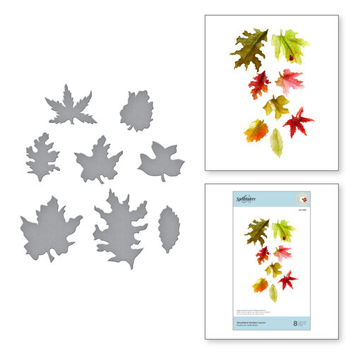 Spellbinders - Susan's Autumn Flora Collection - Etched Dies - Woodland Garden Leaves