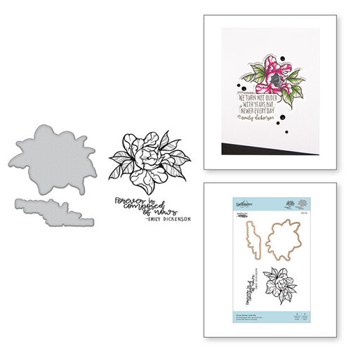 Spellbinders - Inked Messages Collection - Die and Cling Mounted Stamps - Grow Newer With Me
