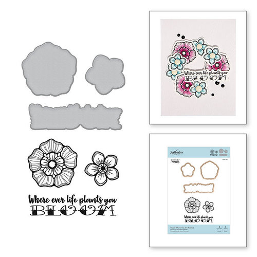 Spellbinders - Inked Messages Collection - Die and Cling Mounted Stamps - Bloom Where You Are Planted
