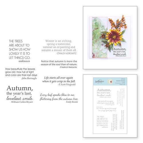 Spellbinders - Susan's Autumn Flora Collection - Clear Photopolymer Stamps - Autumn Quotes