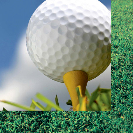 Scrappin Sports and More - Classic Sports Collection - 12 x 12 Double Sided Paper - Golf