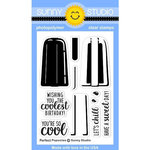 Sunny Studio Stamps - Clear Acrylic Stamps - Perfect Popsicles