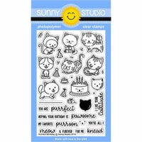 Sunny Studio Stamps - Clear Photopolymer Stamps - Purrfect Birthday
