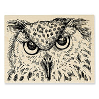 Stampendous - Halloween - Wood Mounted Stamps - Owl Eyes
