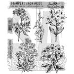 Stampers Anonymous - Tim Holtz - Cling Mounted Rubber Stamp Set - Illustrated Garden