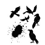 Stampers Anonymous - Tim Holtz - Halloween - Cling Mounted Rubber Stamp Set - Ravens
