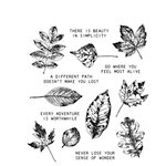 Stampers Anonymous - Tim Holtz - Cling Mounted Rubber Stamp Set - Nature's Wonder