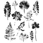 Stampers Anonymous - Tim Holtz - Cling Mounted Rubber Stamp Set - Leaf Prints