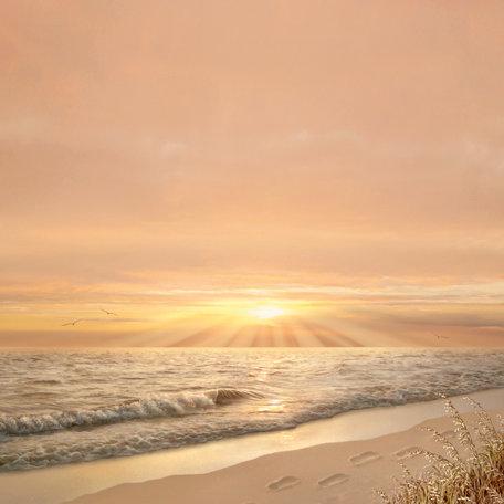 SugarTree - 12 x 12 Paper - Sunset Sand Footprints