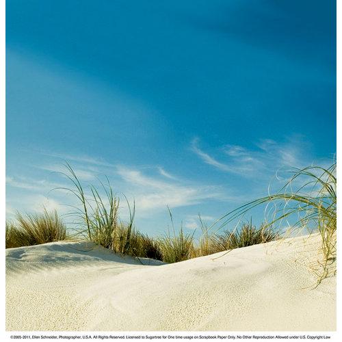 SugarTree - 12 x 12 Paper - Wind Swept Dunes