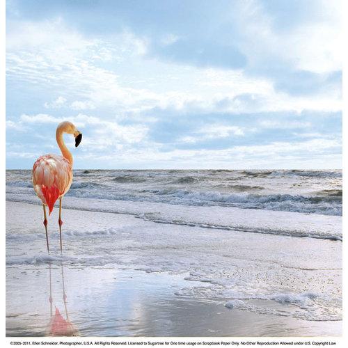 SugarTree - 12 x 12 Paper - Waterline Flamingo