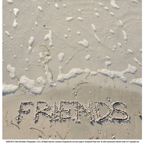 SugarTree - 12 x 12 Paper - Friends