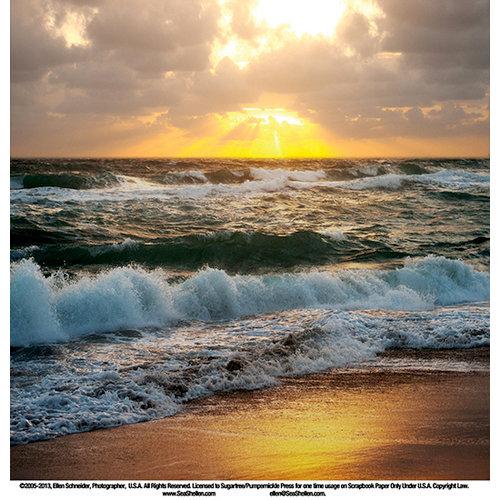SugarTree - 12 x 12 Paper - Sunset Wave