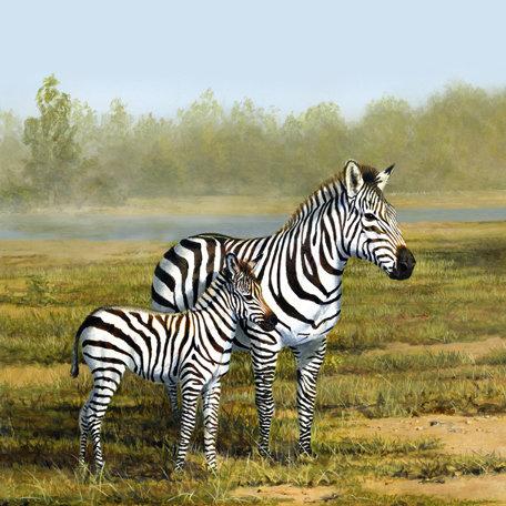 SugarTree - 12 x 12 Paper - Zebra II
