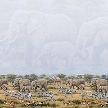 SugarTree - 12 x 12 Paper - Wild Africa
