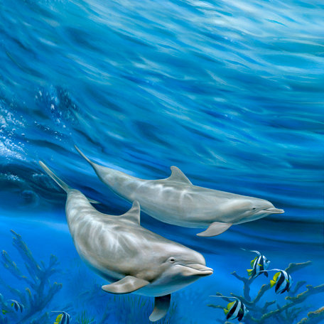 SugarTree - 12 x 12 Paper - Twin Dolphins