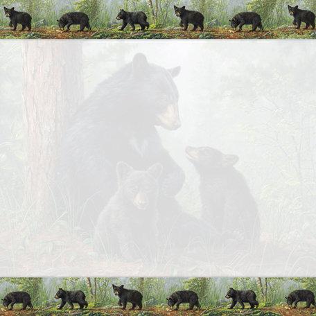 SugarTree - 12 x 12 Paper - Black Bear Trouble