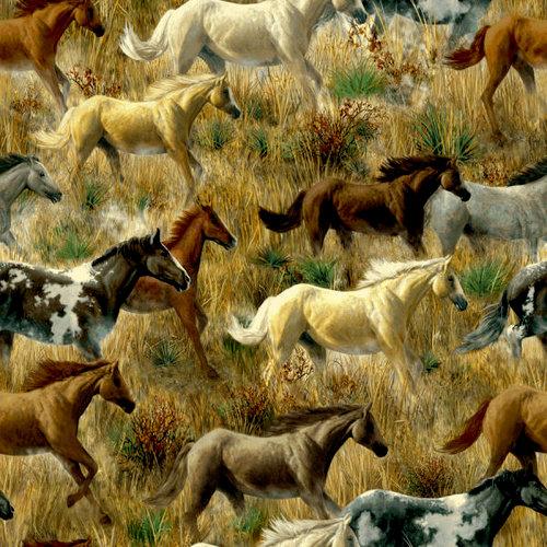 SugarTree - 12 x 12 Paper - Mustangs
