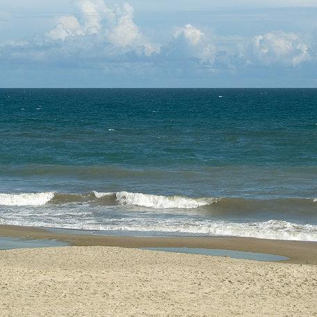 SugarTree - 12 x 12 Paper - Naked Beach