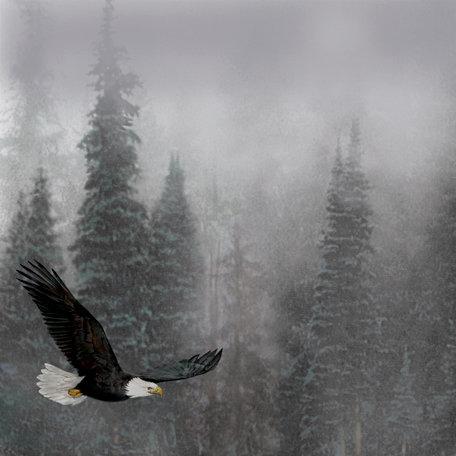 SugarTree - 12 x 12 Paper - Gliding Eagle