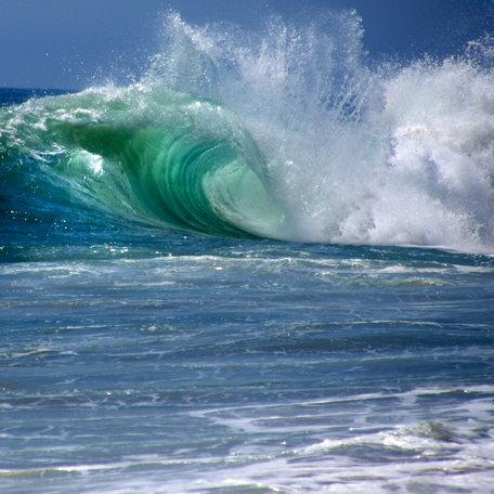 SugarTree - 12 x 12 Paper - Surfs Up - Big Wave