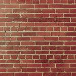 SugarTree - 12 x 12 Paper - Brick Wall