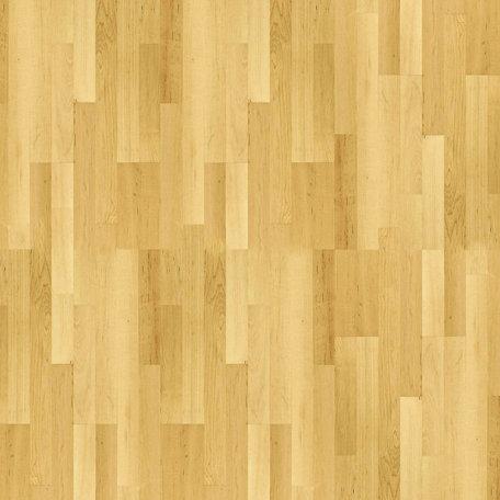 SugarTree - 12 x 12 Paper - Sports Floor