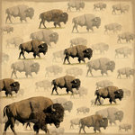 SugarTree - 12 x 12 Paper - Wild Buffalo