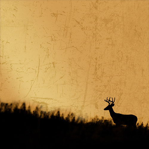 SugarTree - 12 x 12 Paper - Deer Silhouette