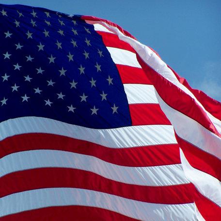 SugarTree - 12 x 12 Paper - US Flag