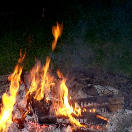 SugarTree - 12 x 12 Paper - Camp Fire