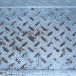 SugarTree - 12 x 12 Paper - Metal Plate