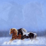SugarTree - 12 x 12 Paper - Horses in Snow