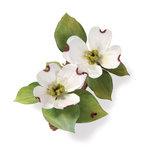 Sizzix - Susan's Garden Collection - Thinlits Die - Flower, Dogwood