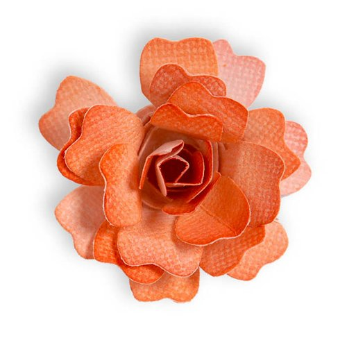 Sizzix - Sizzlits Die - Die Cutting Template - Flower, Rose 3-D