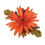 Sizzix - Susans Garden Collection - Thinlits Die - Flower, Gerbera Daisy
