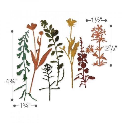 Sizzix - Tim Holtz - Alterations Collection - Thinlits Die - Wildflowers 2