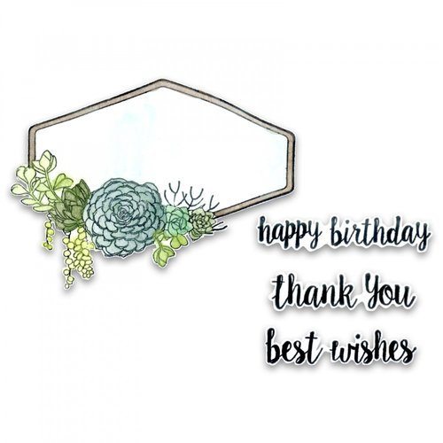 Sizzix - Framelits Die with Clear Acrylic Stamp Set - Succulent Sentiments