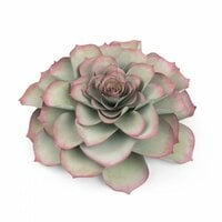 Sizzix - Celebrations Collection - Framelits Die - Large Succulent