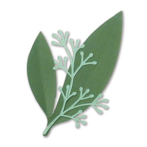 Sizzix - Celebrations Collection - Framelits Die - Eucalyptus