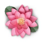 Sizzix - Celebrations Collection - Framelits Die - Large Lotus