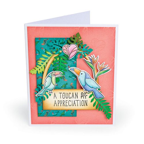 Sizzix - Tropicool Vibes Collection - Framelits Die with Clear Acrylic Stamp Set - Toucan Sentiments