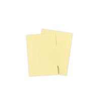 Sizzix - Surfacez Collection - A6 - Card and Envelope Pack - 10 Pack - Limoncello