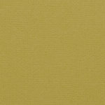 Tonic Studios - Festive Season Collection - Classic Card - 12 x 12 Paper - Olive Green - 5 Pack