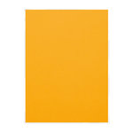 Tonic Studios - Surprise Party Collection - Classic Card - 8.5 x 11 Paper - Mustard Yellow - 10 Pack