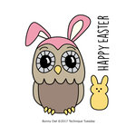 Technique Tuesday - Clear Acrylic Stamps - Bunny Owl