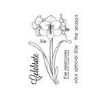 Technique Tuesday - Clear Acrylic Stamps - Greenhouse Society Amaryllis