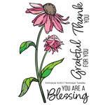 Technique Tuesday - Greenhouse Society Collection - Clear Acrylic Stamps - Echinacea