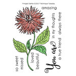 Technique Tuesday - Greenhouse Society Collection - Clear Acrylic Stamps - Fringed Dahlia